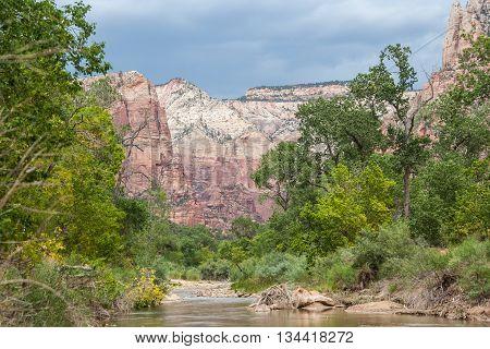 Virgin River In Zion National Park In  Utah