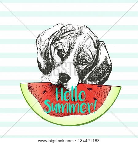 Vector hand drawn illustration of beagle dog eating the watermelon slice. Hello summer. Isolated on light green strips. fresh fashion vibrant summer poster.