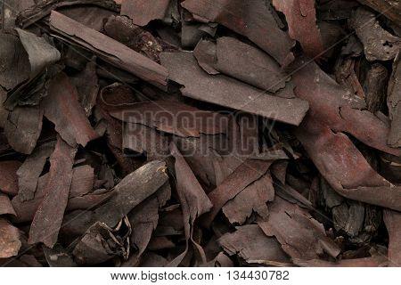 Organic dry barks of Ratan Jot (Alkanna tinctoria) Macro close up background texture. Macro close up. Top view.