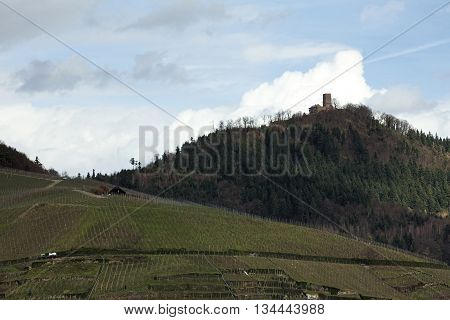 Far View On Castle Ruin Yburg Near Baden-baden, Baden-wurttemberg, Germany, Above Vineyards
