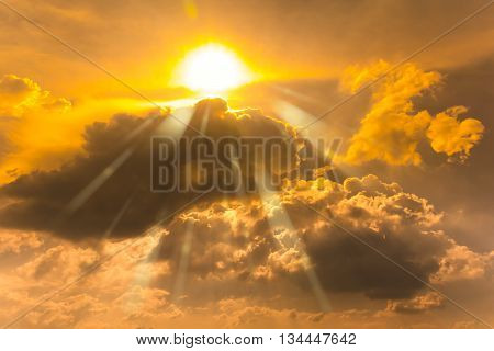Golden sky with the sunlight. Beautiful sunlight