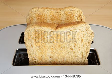 close up of two slices of toast in toaster