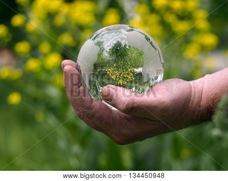 Glass transparent sphere in hand of man on the background color. Hand working