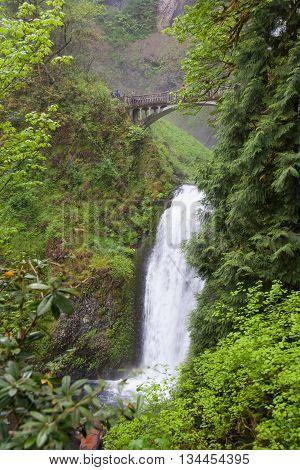 Multnomah Falls Oregon state, United State of America