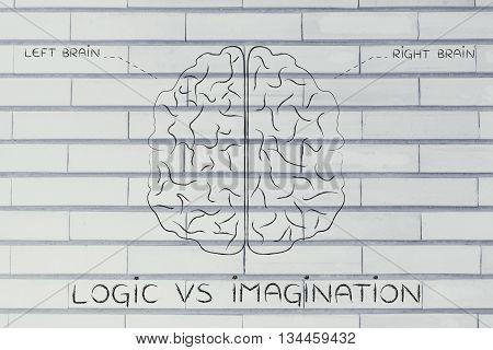 Left And Right Brain Illustration, Caption Logic Vs Imagination