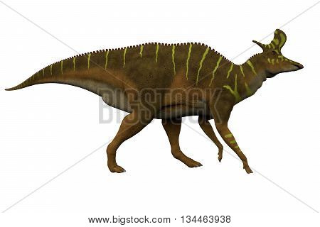 Lambeosaurus Side Profile 3D Illustration - Lambeosaurus was a hadrosaur dinosaur that lived in North America in the Cretaceous Period.