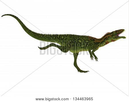 Masiakasaurus Side Profile 3D Illustration - Masiakasaurus was a theropod dinosaur that lived in Madagascar during the Cretaceous period.
