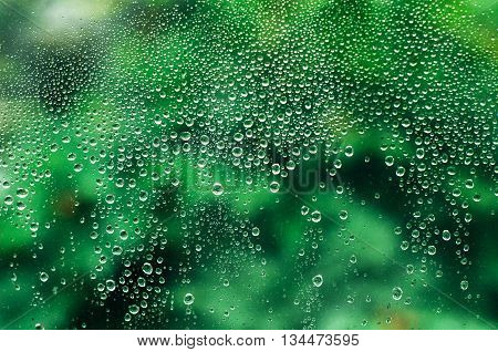 Drops of rain on a window glass.Through the window view of the garden . Rain drops on the windows. green