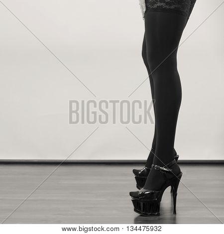 Sexy Long Female Legs In Black.