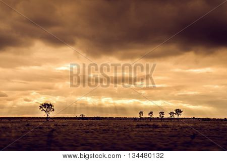 Landscape of the sun setting in outback Queensland, Australia.