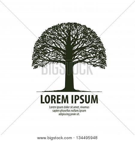 Tree logo. Silhouette oak icon. Nature, ecology symbol Vector illustration