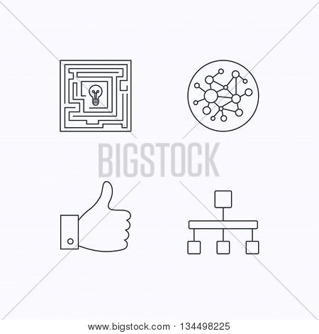 Global network, like and hierarchy icons. Maze linear sign. Flat linear icons on white background. Vector