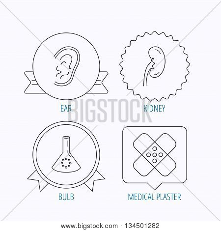 Lab bulb, medical plaster and ear icons. Kidney linear sign. Award medal, star label and speech bubble designs. Vector