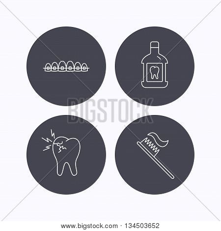 Toothache, dental braces and mouthwash icons. Toothbrush linear sign. Flat icons in circle buttons on white background. Vector