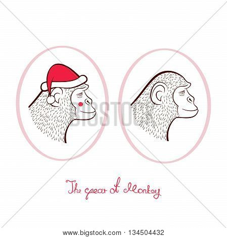 Holiday set for New year, pencil drawing two monkeys in cap of Santa Claus and without, outline cartoon character faces in profile in oval frames, vector illustration