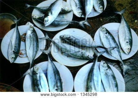 fish sold