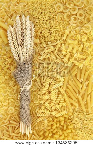 Dried italian pasta food selection with wheat bundle in hessian forming an abstract background.