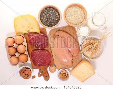 food high in protein