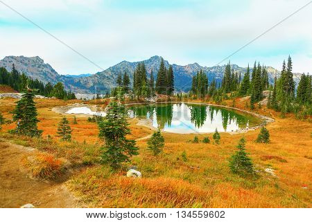 Mount Rainier national park Washington with perfect scenery
