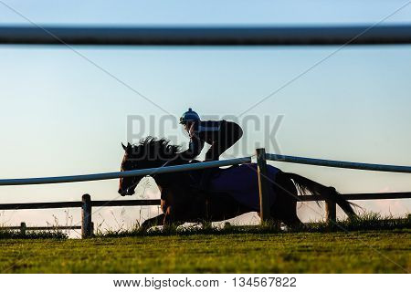 Race horses rider jockey training running track action morning silhouetted landscape.