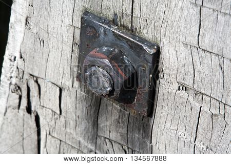 Rusty nut and bolt on weathered wood