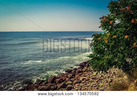 Beautiful sea with blue summer wave and tree on beach. Summer sea background. Endless sea. Daylight sea. Turquoise sea. Sea foam and brown rocks. Sunny day sea view. Sea waves against rocks. Sea rock.