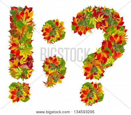 Punctuation Marks  Made From Autumn Leaves, Isolated On White