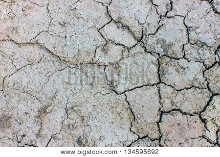 texture soil Cracked arid  pattern for background.