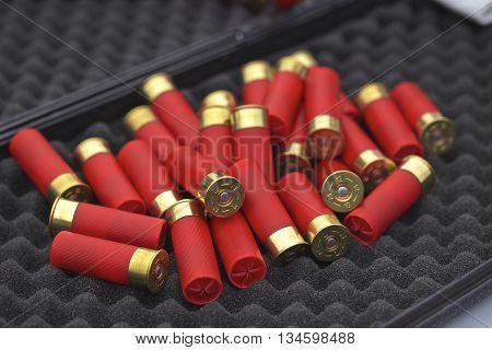 12 gauge shotgun shells with shotgun on surface