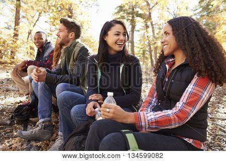 Friends sit on a fallen tree in forest, two women talking