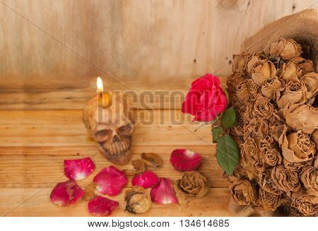 Love abstract concept ties Vintage red roses candles and dry scalps blurred.
