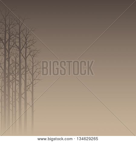 Trees Background. Vector Illustration Of A Hazy Forest Silhouette
