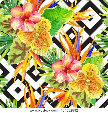Beautiful tropical plants on black and white background with geometric pattern. Composition with lily strelitzia palm and begonia leaves and orchid.