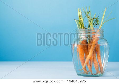 Bunch of small fresh garden carrots in glass bottle of water on bright blue wooden background copy space