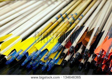 End Of Sport Archery Arrows In Row
