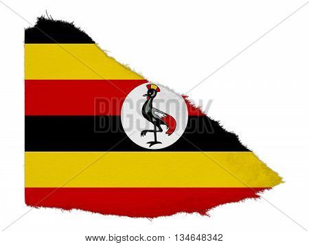 Flag Of Uganda Torn Paper Scrap Isolated On White Background