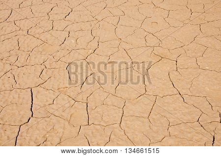 The dry ground. Ecology concept. Global warming concept.