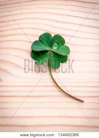 Clovers Leaves On Wooden Background.the Symbolic Of Four Leaf Clover The First Is For Faith, The Sec