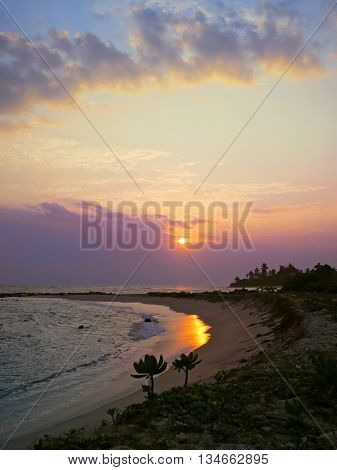 Sunset bay with plants and sun, Kamburugamuwa, Mirissa, Sri Lanka