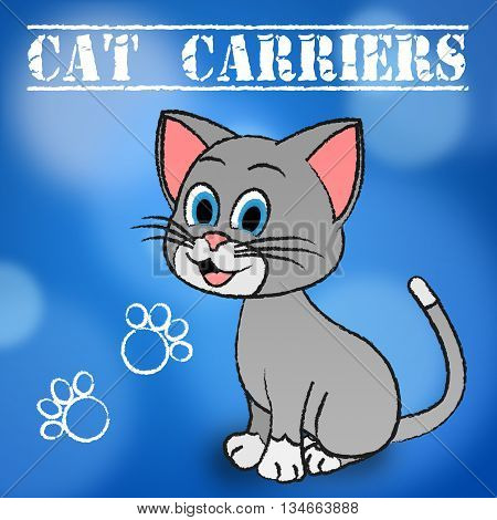 Cat Carriers Indicates Container Box And Kitten