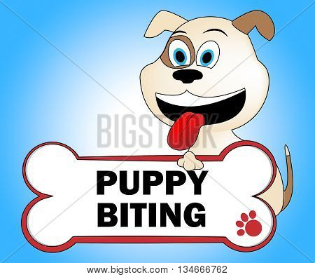 Puppy Biting Shows Aggressive Puppies And Aggression