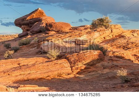 Colorful Rocks At Horse Shoe Bend Of Colorado River, Near Page, Arizona,  Usa