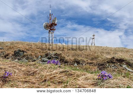 Scenic view with flowers and a telecommunications tower on top of the mountain against the blue sky on a sunny summer day