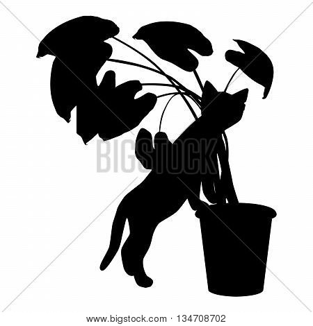 Vector silhouette cat paws rests on a pot. Cute kitten playing at flower pot.