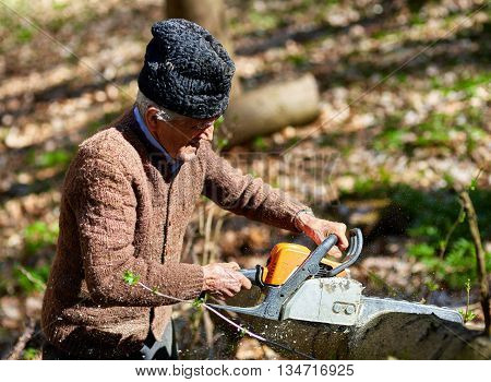 Old woodcutter working with chainsaw on a beech log