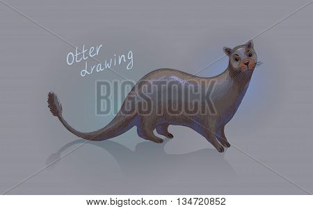 Otter. Vector drawing. Hand-drawn sketch or illustration.
