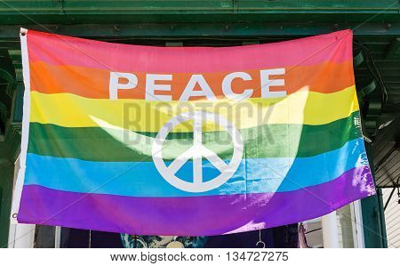 Peace Sign on a Gay Pride Flag