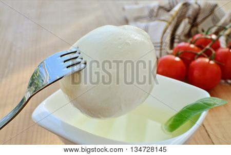 Mozzarella cheese ball on fork brine in bowl