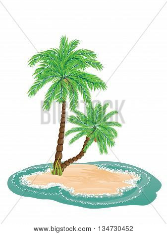 Palm Tree On Island