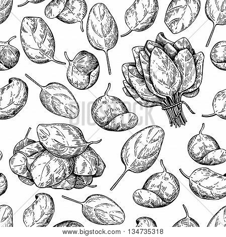 Spinach bunch and leaves hand drawn vector seamless pattern. Isolated Spinach leaves drawing on white background. Vegetable engraved style illustration. Detailed botanical drawing. Farm market product
